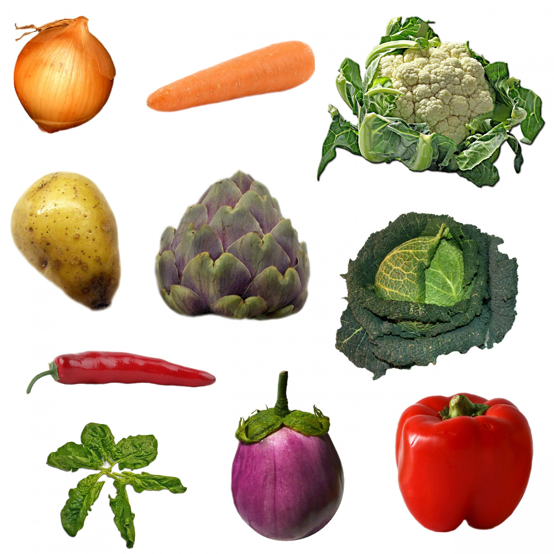 vegetables-on-white-background.jpg