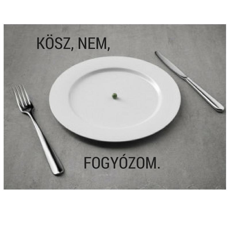 FOGYÓZOM