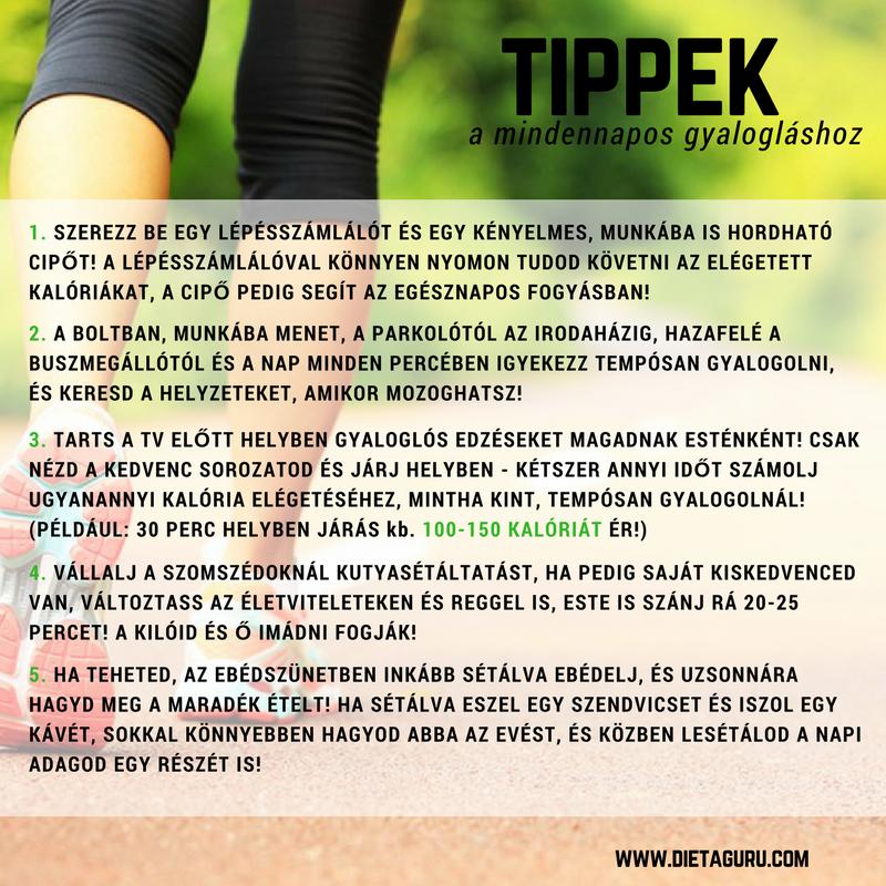 TIPPEK.png